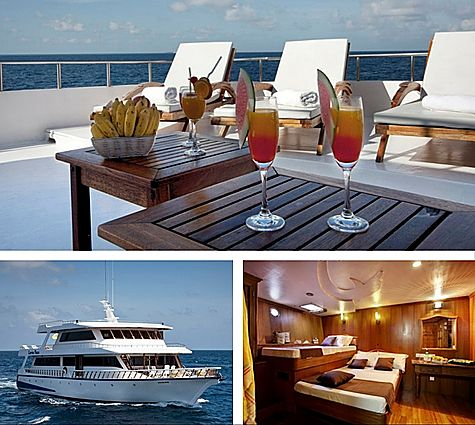 Maldives Conte Max NEW Gr Deals boat only 472x425
