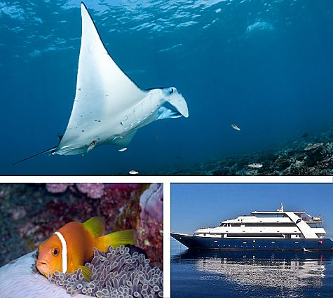 Maldives Master Gr Deals Set 475x425 opt