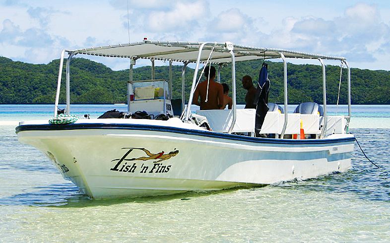 fish n fins dive boat opt