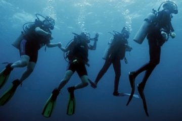x Family of 4 Divers